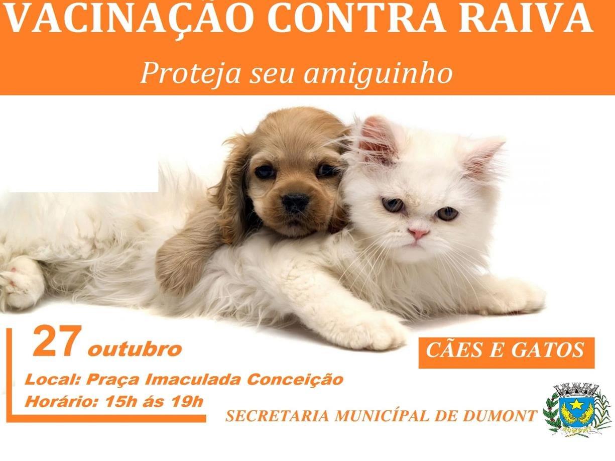 VACINAÇÃO CONTRA RAIVA - CÃES E GATOS